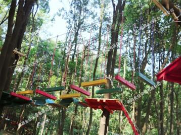 广东英德丛林穿越项目